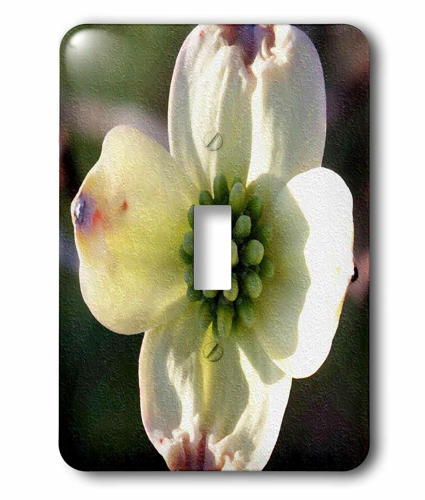 3drose Dogwood Bloom 1 Gang Toggle Light Switch Wall Plate Wayfair