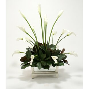 Silk Calla Lilies and Magnolia Leaves in Mirrored Box