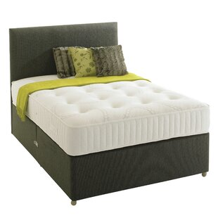 Jolla Steere Coil Sprung Soft Divan Bed By 17 Stories