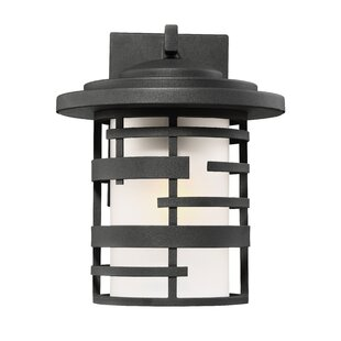 Neven Outdoor Wall Lantern