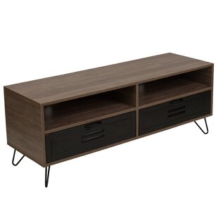 Coyer TV Stand for TVs up to 43