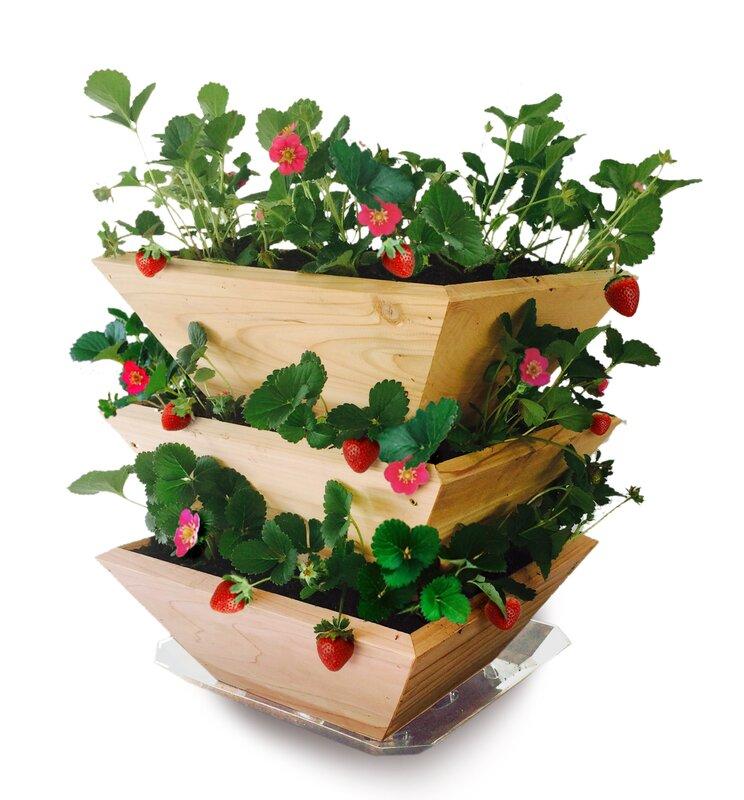 Homegrown Gourmet Garden Strawberry Patch Tower Wood Vertical Garden Planter