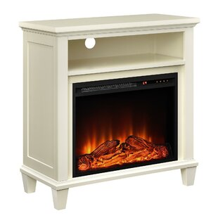 Lytton Electric Fireplace by N..