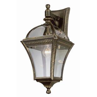 Camelot 1-Light Outdoor Wall Lantern