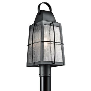 Beamer Outdoor 1-Light Lantern Head by Darby Home Co