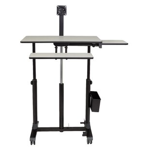 Kang Sit-Standing Desk by Symple Stuff