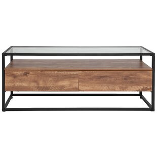 Union Rustic Riaan Coffee Table with Stor..