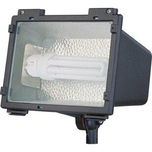 1-Light Flood Light by Nuvo Lighting