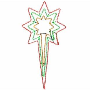 Animated North Star LED Lighted Display Image