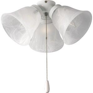 Find The Best Ceiling Fan Light Kits Wayfair