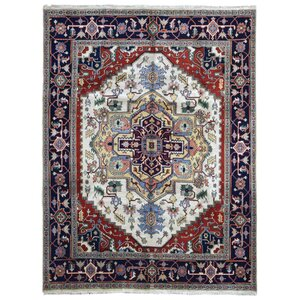 Garden City Serapi Hand-Woven Wool Black/Beige/Red Area Rug