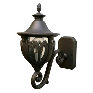 Alcott Hill Phillipstown 1-Light Outdoor Sconce