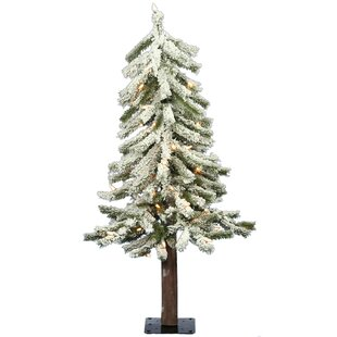 3 foot christmas tree with lights nearly natural flocked alpine 3 whitegreen pine artificial christmas tree with 50 clearwhite lights foot white trees youll love wayfair