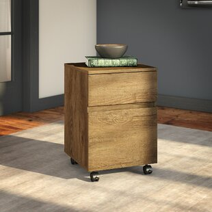 Yadiel 2-Drawer Mobile Vertical Filing Cabinet by Brayden Studio Great price