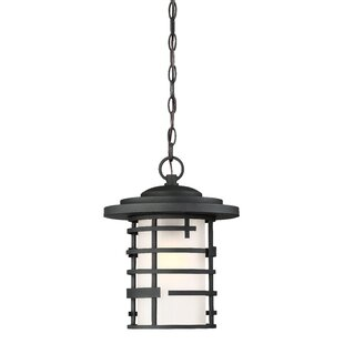 Top Reviews Neven 1-Light Outdoor Hanging Lantern By Ivy Bronx