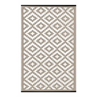 Lightweight Reversible Taupe/White Indoor/Outdoor Area Rug
