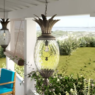 Terry 4-Light Outdoor Pendant