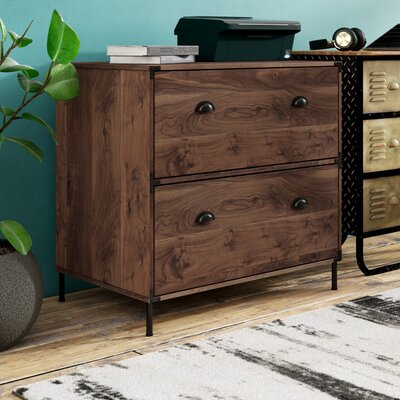 Williston Forge Orman 2-Drawer Lateral Filing Cabinet  Color: Walnut