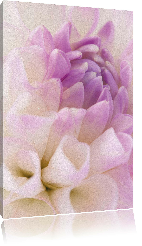 Lavendel Leinwandbild Wanddeko Kunstdruck