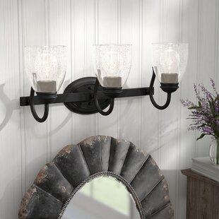 Laurel Foundry Modern Farmhouse Sheila 3-Light Vanity Light