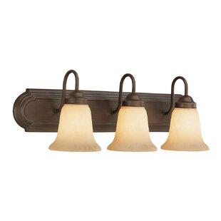 Spalding 3-Light Vanity Light by Fleur De Lis Living