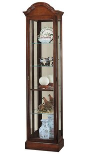 Brister Lighted Curio Cabinet by Darby Home Co