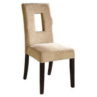 Catina Side Chair (Set of 2) by Hokku Des..