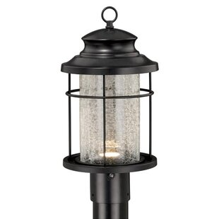 Alorton Outdoor 1-Light Outdoor Lantern Head