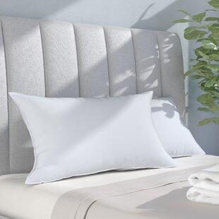 Alwyn Home Polyfill Queen Pillows (Set of 2)