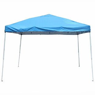 ALEKO Collapsible 10 Ft. W x 10 Ft. D Steel Pop-Up Canopy