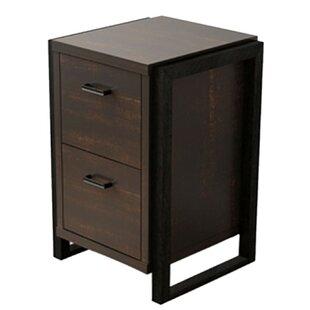 Schrimsher Storage Cabinet by Williston Forge