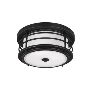 Breakwater Bay Newcastle 2-Light Outdoor Flush Mount