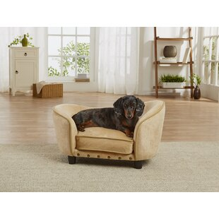 Elevated Dog Beds Youll Love Wayfairca
