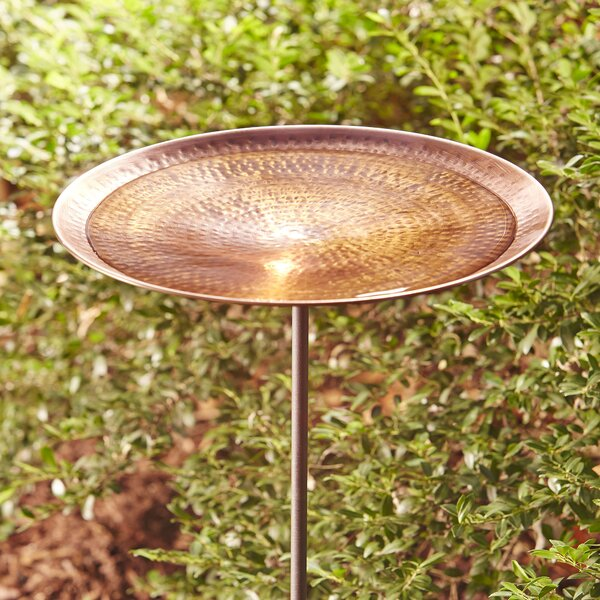 Bird Baths, Feeders & Tables Vintage Used Repainted Black Cast Iron Metal Birdbath Bowl Garden Décor Old Colours Are Striking