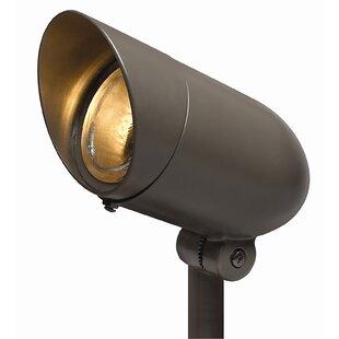 Hinkley Lighting 1-Light Spot Light