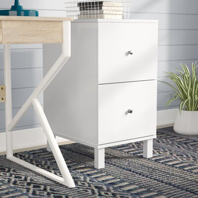 Lynch 2-Drawer Vertical Filing Cabinet by Ebern Designs
