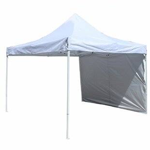 ALEKO Collapsible 10 Ft. W x 10 Ft. D Metal Pop-Up Canopy