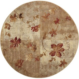 Dundridge Hand-Woven Brown/Red Area Rug by Alcott Hill