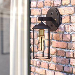 Buy clear Marshall 1-Light Outdoor Wall Lantern By Trent Austin Design