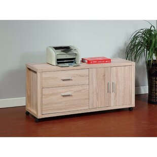 Latitude Run Domenech Coherence Utility 2-Drawer Lateral Filing Cabinet