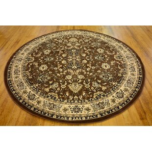 Concord Brown Area Rug by Astoria Grand