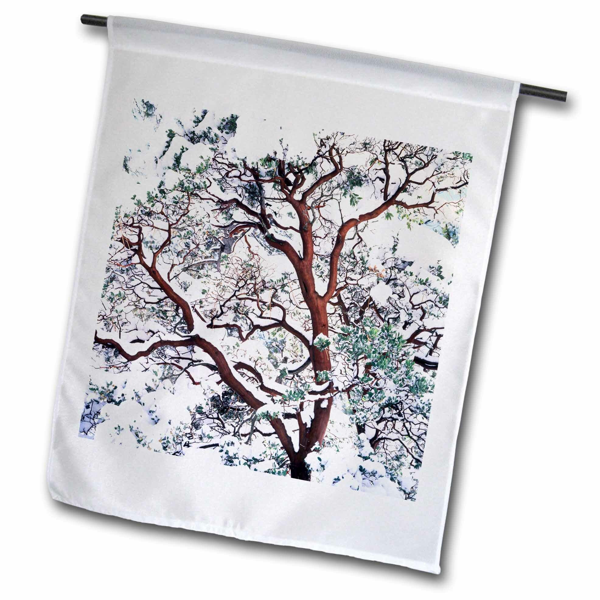 3drose Snow On Manzanita Bush Cleveland National Forest California Usa Polyester 18 X 12 In House Flag Wayfair