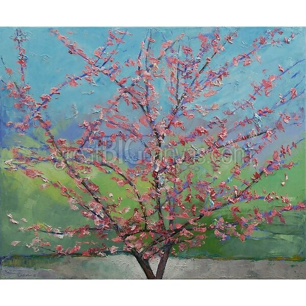 Great Big Canvas Eastern Redbud Tree By Michael Creese Print
