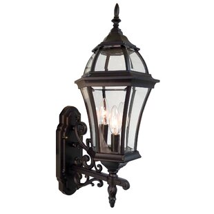 Plantation 1-Light Outdoor Sconce