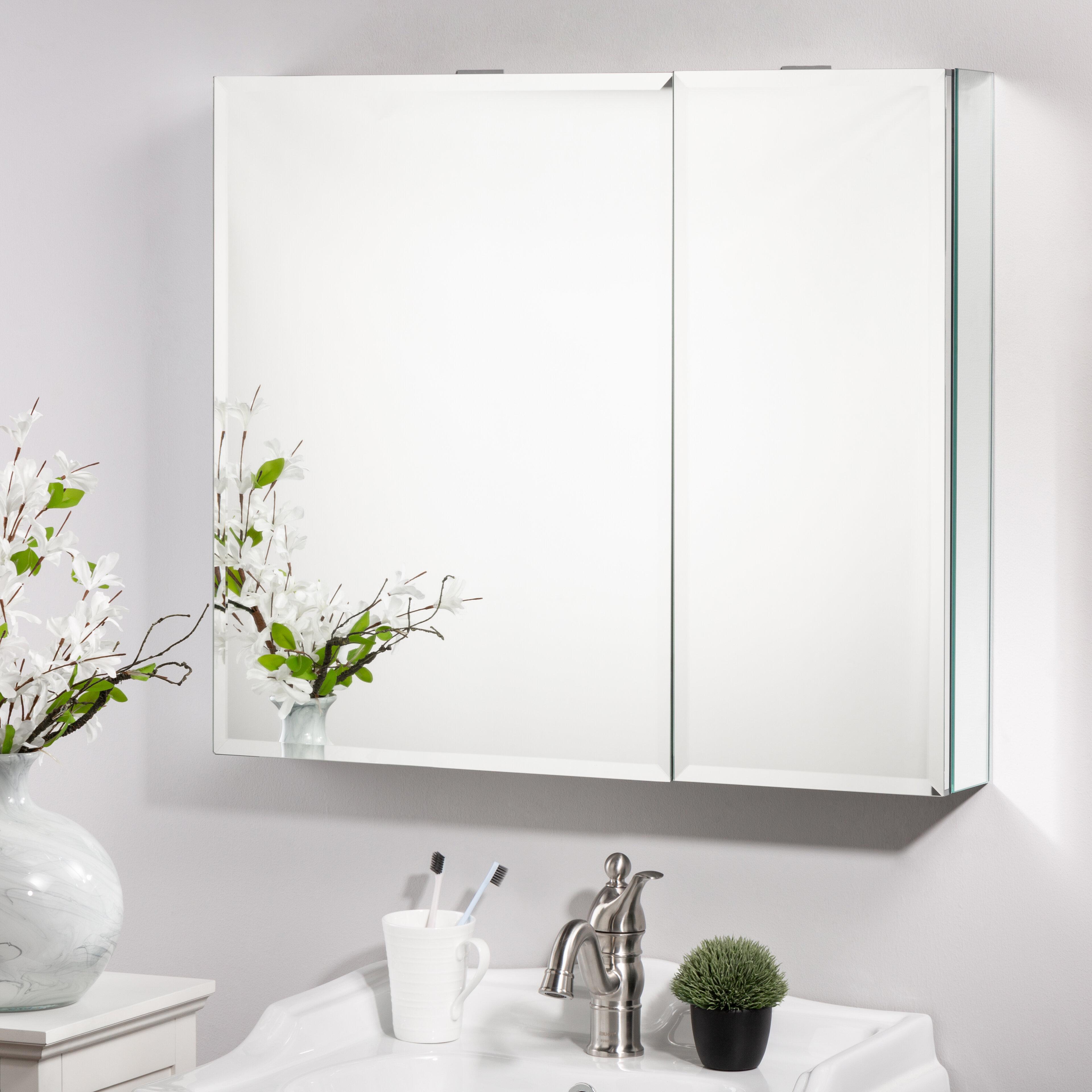 Ebern Designs Alfredina Recessed Or Surface Mount Frameless 2 Door Medicine Cabinet With 6 Shelves Wayfair