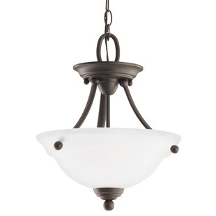 Darby Home Co Busti 2-Light Bowl Pendant