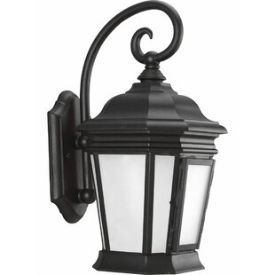 Alcott Hill Triplehorn 1-Light Outdoor Black Wall Lantern