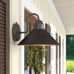 Zuleika 1-Light Outdoor Barn Light