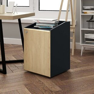 Ebern Designs Cordon 2 Drawer Mobile Vert..