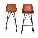 Sandridge Bar & Counter Stool (Set of 2) by Union Rustic